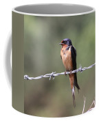 Not A Worry Coffee Mug
