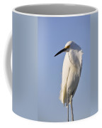 Not Ruffled Coffee Mug