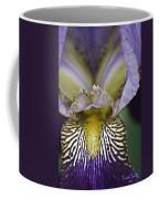Now That's A Beauty Coffee Mug