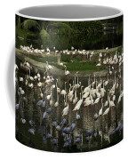 Number Of Flamingoes Inside The Jurong Bird Park In Singapore Coffee Mug