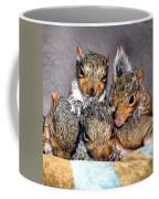 Nut Brothers Coffee Mug