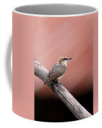 Nuthatch - Bird - Barn Roof Coffee Mug