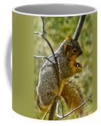 Nuts And Seeds Make A Great Lunch Coffee Mug