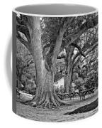 Oak Alley Backyard Monochrome Coffee Mug
