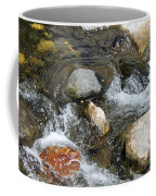 Oak Creek Coffee Mug