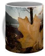 Oak Leaf In Backlight Coffee Mug