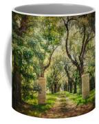Oak Tree Lined Drive Coffee Mug