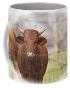 Oh Fence Please Hold Coffee Mug