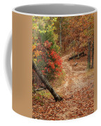 Old Country Road In Shannon County Coffee Mug