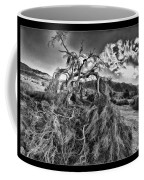 Old Desert Tree Coffee Mug