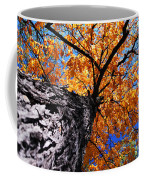 Old Elm Tree In The Fall Coffee Mug