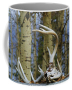 Old Skull And Antlers Coffee Mug