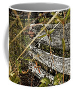 Old Weathered Gate Photoart II Coffee Mug