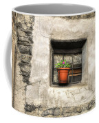 Old Window Coffee Mug