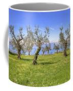 olive grove on Lake Gardan Coffee Mug