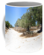 Olive Trees In Samaria Coffee Mug