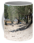 Olive Trees In Sebastia Nablus Coffee Mug
