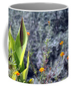 Olive Trees In The Background Coffee Mug