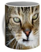 Oliver The Cat Coffee Mug