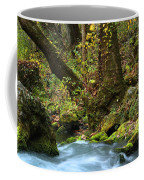 On The Banks Of Big Spring In The Missouri Ozarks Coffee Mug