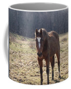 One Funny Horse Coffee Mug by Robert Margetts
