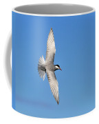 One Good Tern Deserves Another Coffee Mug