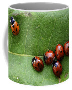 One Lady Bug Voted Off The Island Coffee Mug