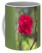 One Rose Coffee Mug