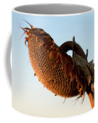 One Sunflower Head Wilted Coffee Mug