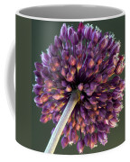 Onion Flower Coffee Mug
