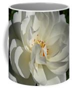 Open Iceberg Coffee Mug
