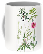 Opium Poppy And Other Plants  Coffee Mug by  Elizabeth Rice