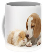 Orange-and-white Beagle Pup And Alpaca Coffee Mug