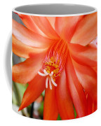 Orange Cactus Coffee Mug