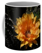 Orange Echinopsis Flower  Coffee Mug
