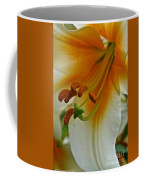 Orange Interior Coffee Mug