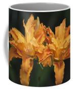 Orange Kwanso Daylily Pair Coffee Mug