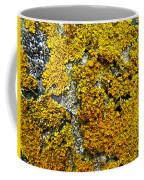 Orange Lichen - Xanthoria Parietina Coffee Mug