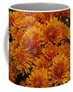 Orange Mums Coffee Mug