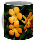 Orange Rhododendron Flowers Coffee Mug