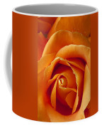Orange Rose Close Up Coffee Mug by Garry Gay