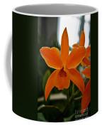 Orange Sherbert  Orchid Coffee Mug