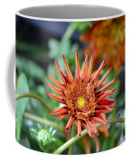 Orange Starburst Coffee Mug