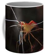 Orange White And Red Shrimp, Bali Coffee Mug