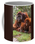 Orangutan Mother And Baby Coffee Mug