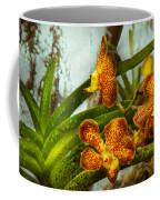 Orchid - Oncidium - Ripened   Coffee Mug