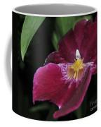 Orchid 252 Coffee Mug