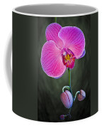 Orchid And Buds Coffee Mug