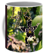 Orchid Study Coffee Mug