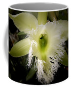 Orchid With Feathery Ends Coffee Mug
